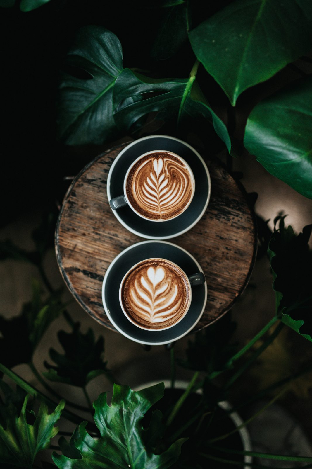 why you need coffee in your life