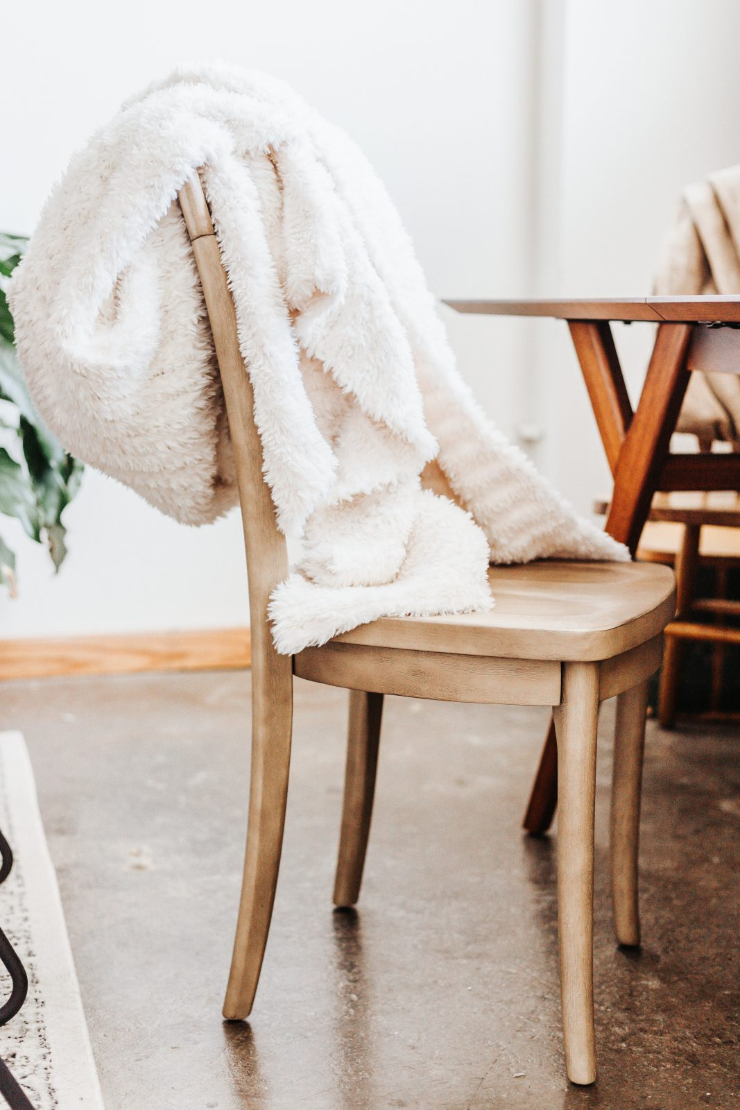 pottery barn furniture and throw
