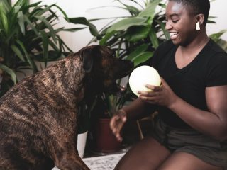 ways to take better care of your pet